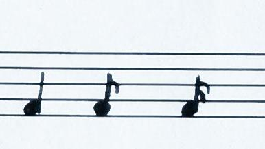 From the left: quater note, eighth note, sixteenth note.