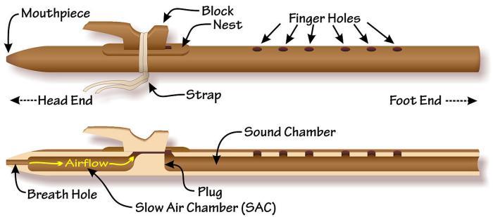 Source: http://en.wikipedia.org/wiki/Native_American_flute#/media/File:Native_American_flute_Composite_Anatomy.jpg