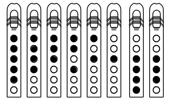Diatonic Major Scale for Native American Flute